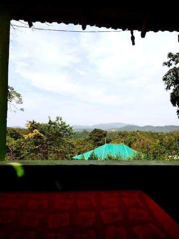 Private House with beautiful Jungle View Terrace