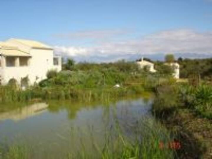 Aroggia farmhouses