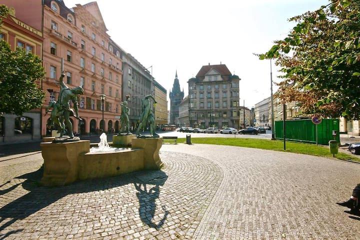 One single bedroom for JUNE  near the city center - Praha - Apartemen
