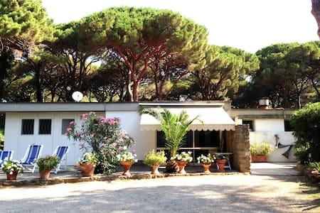 Roccamare - Villa Nannia - Roccamare - Haus