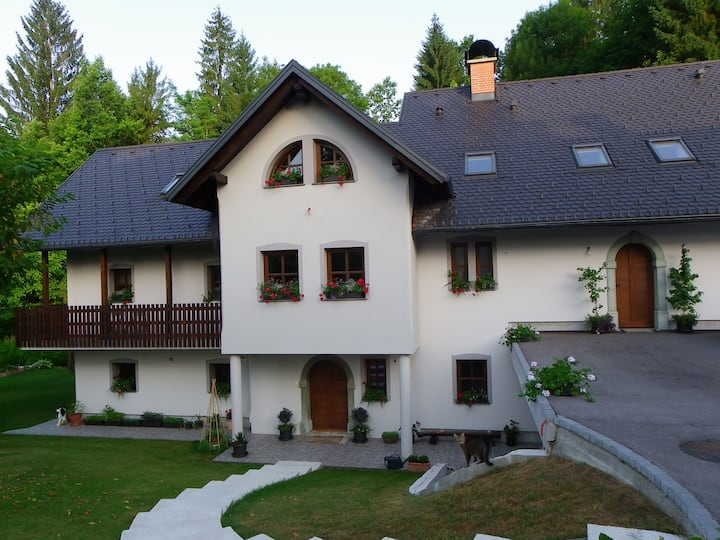 The Millhouse Bled.. Large Private House sleeps 20