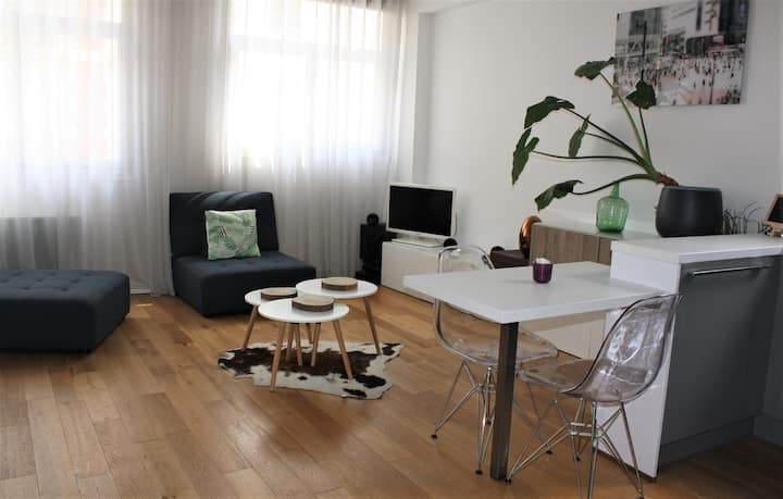 Cosy parisian appartment