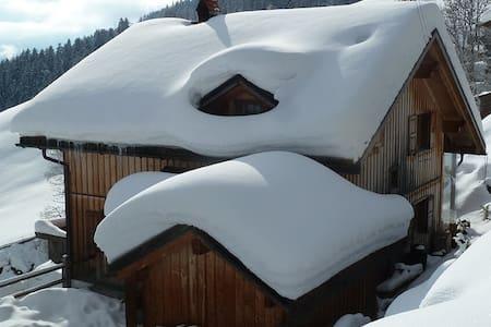 Försterhaus Dalin Ferienwohnung Schweizer Alpen