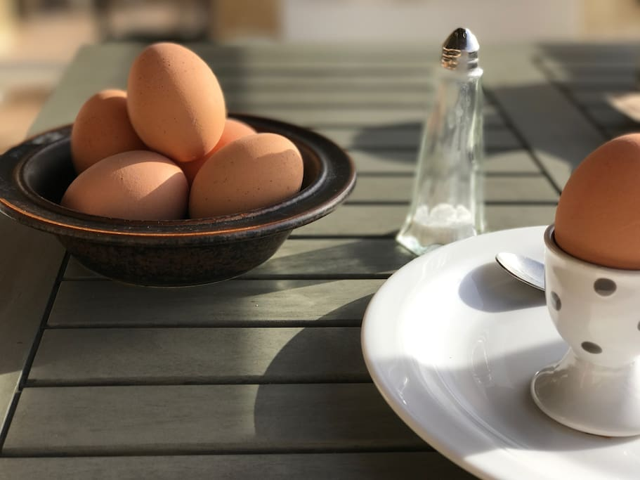 What a nice way to have the breakfast egg..