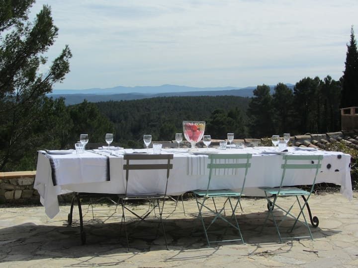 Authentic magical retreat Provence, up to 9 guests