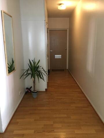 Three room appartment in city center