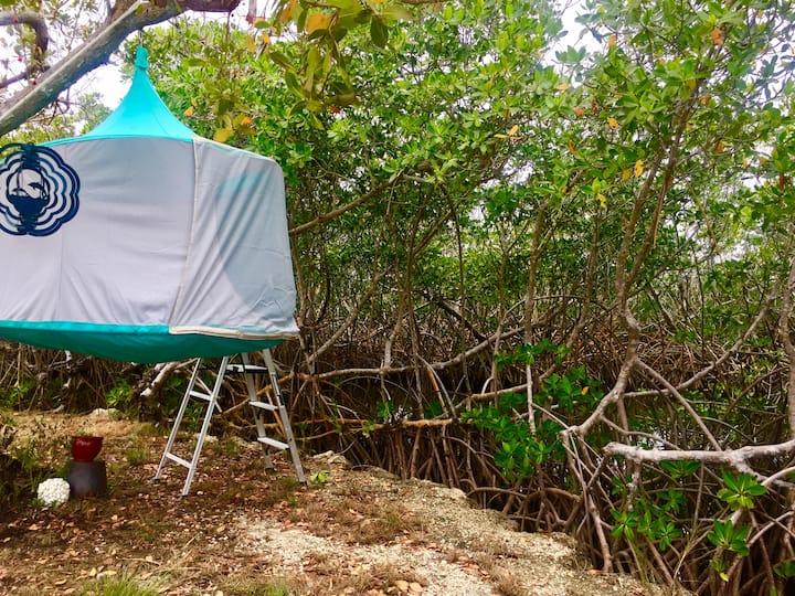 Arboreal Cabana