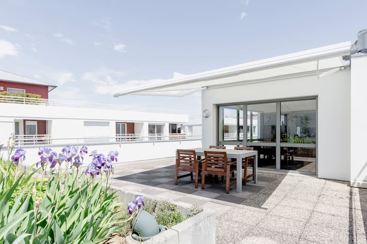 Gorgeous 3 bedroom rooftop appartment near Basel
