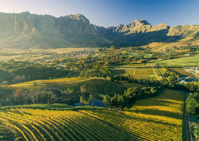 Bartinney Stellenbosch Guidebook