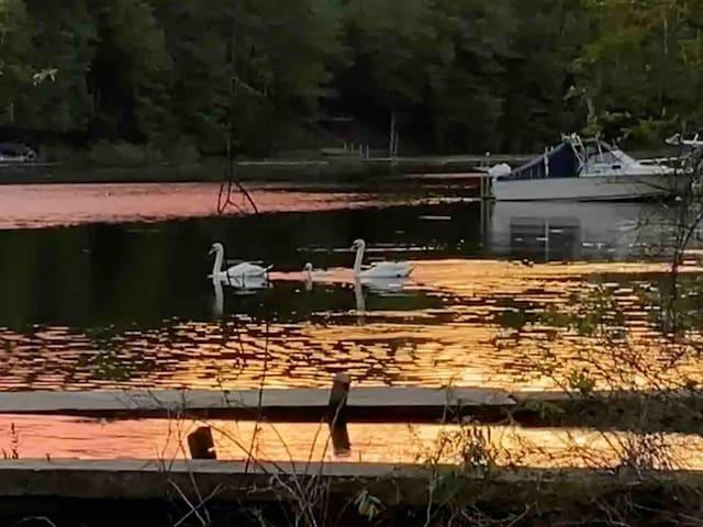Serenity at Waters Edge - Grand Haven, Michigan