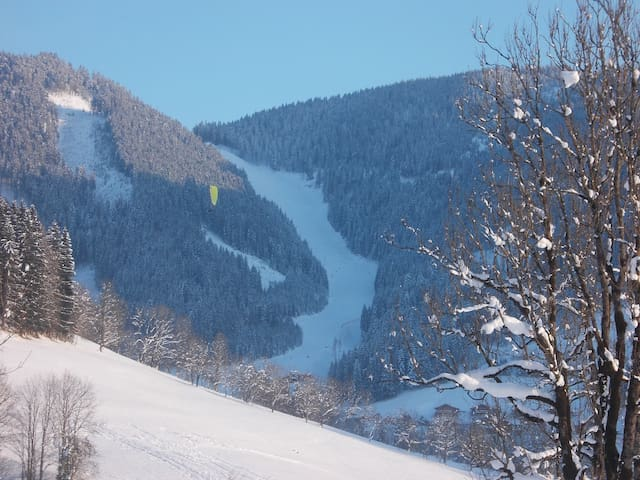 Sport and nature in Salzburg region