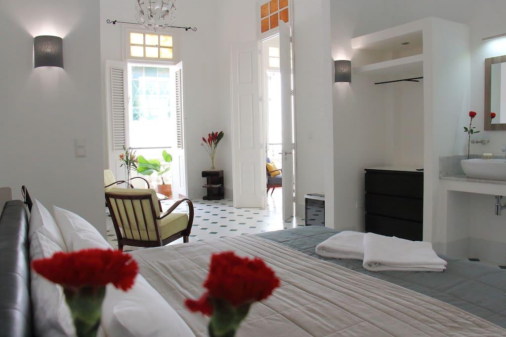 Suite 1 (private room)