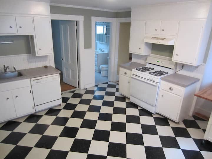 Charming Davis Sq 1-Br Monthly Rental