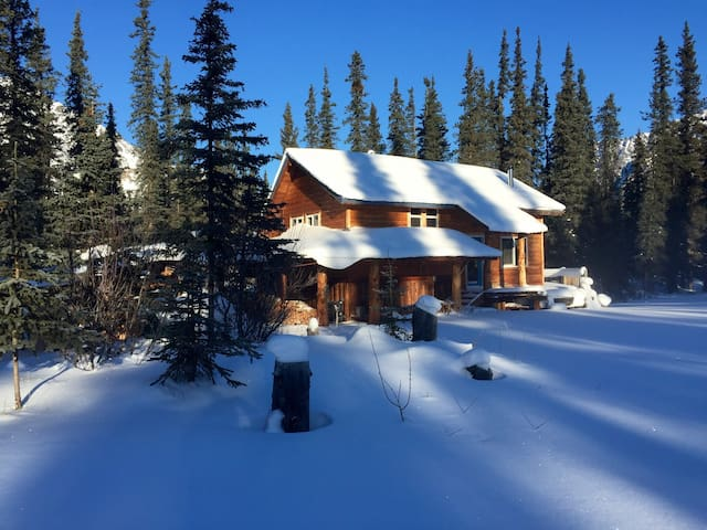 Tim's cabin - Cantwell - Stuga