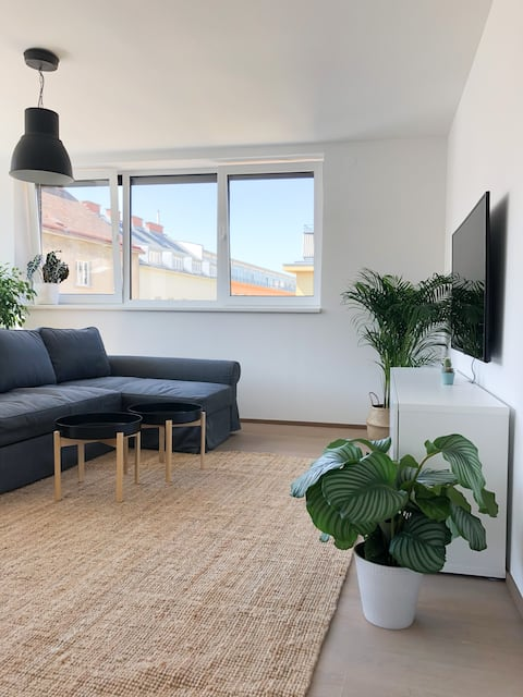 Spacious  apartment close to metro