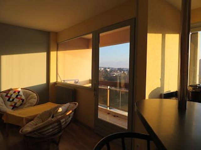 Le salon plein sud avec balcon