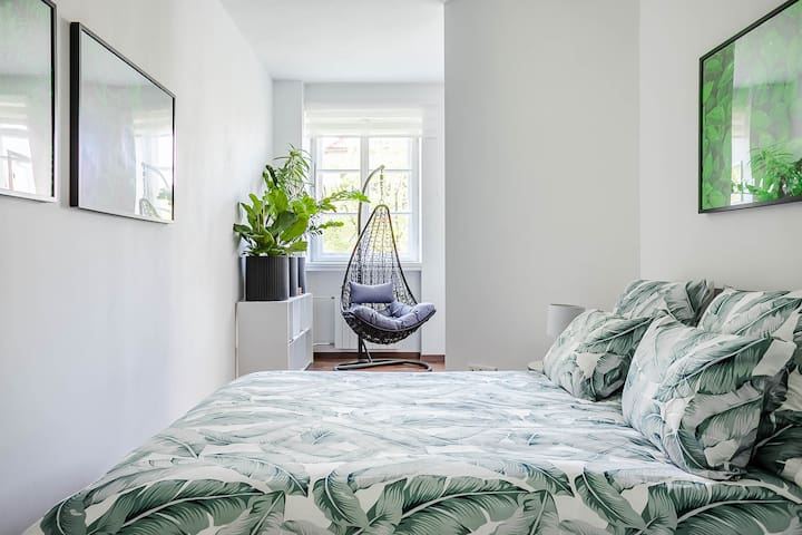 Beautiful Green Apartment in the heart of Old Town