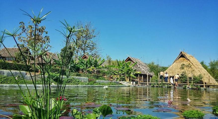 Traditional Bamboo Bungalow - Chiang Mai - Domek parterowy