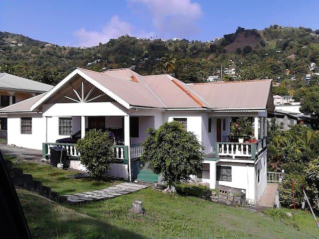 Island Paradise - Kingstown - House