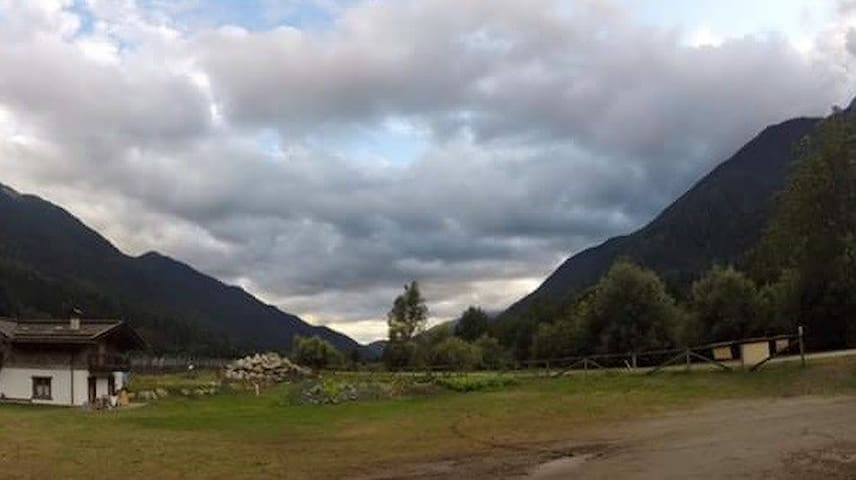 Nido Alpino: calda accoglienza trentina - Giustino - Hus
