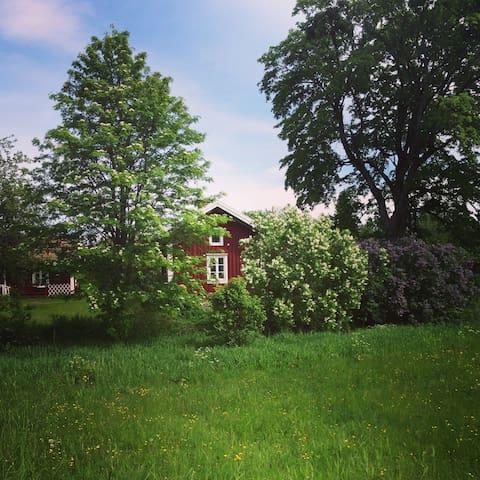 Liten och mysig stuga i Ramsberg - Ramsberg