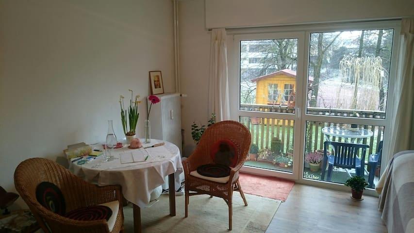 1 Zimmer mit Balkon und Garten - Weingarten