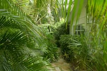 Private Entrance Garden Path