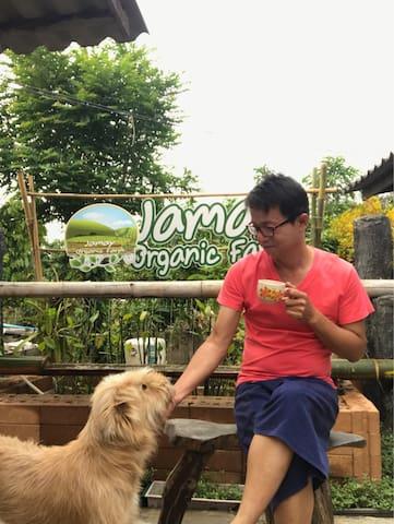 Fang lagoon organic Farmstay