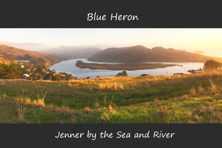 Blue Heron - a view from every room