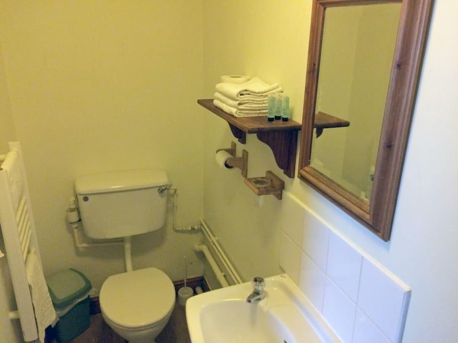 Room 5 Toilet