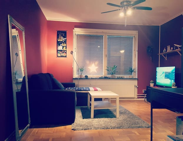 Cosy and clean apartament for you! - Göteborg