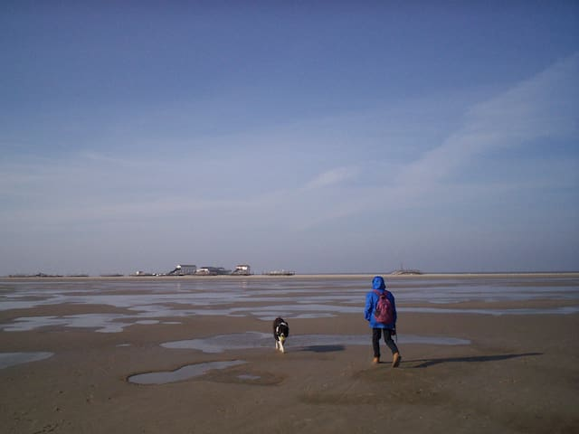 Jack und Rita  in ST.Peter Ording