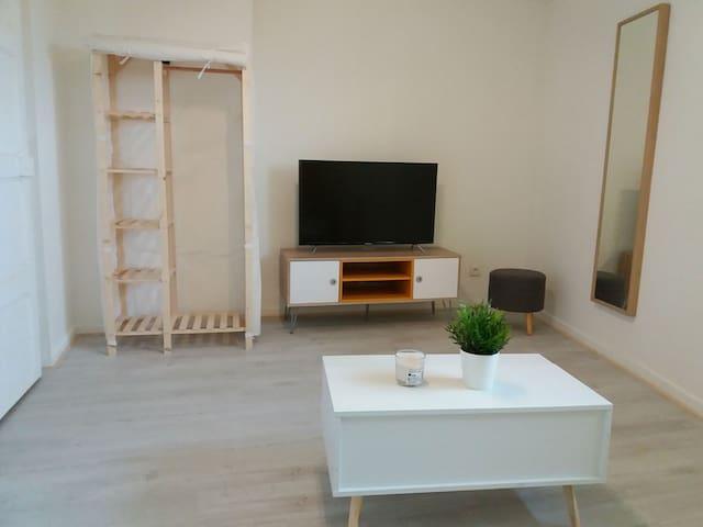 Appartement T1 rénové centre  historique de Vienne