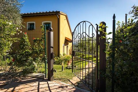 Cottage im Olivenhain mit Hügelblick und Pool