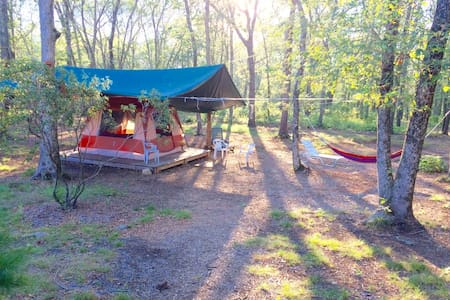 Private tent platform, wooded,quiet - South Kingstown