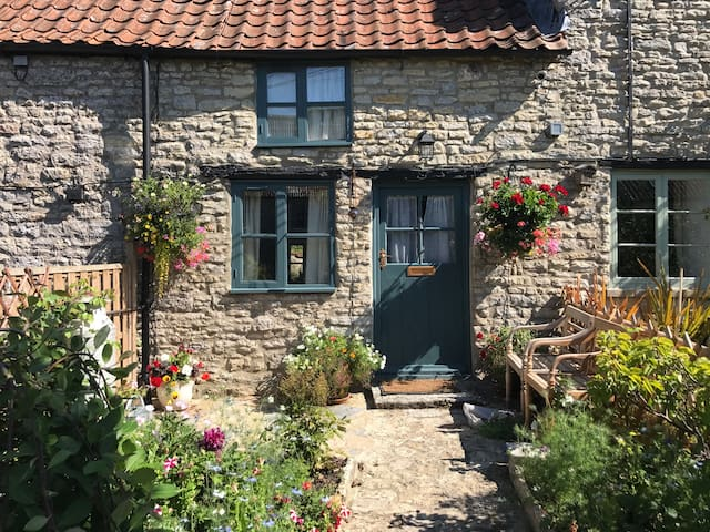 Beautiful 400 yr old Stone Cottage in Pilton