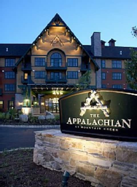 Appalachian Mt. View 1 Bdrm Suite 3rd Flr Balcony