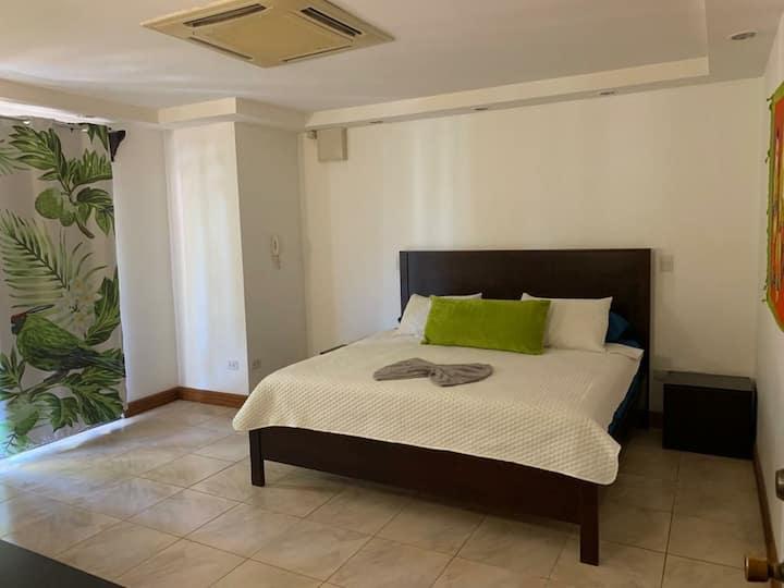 Private luxury bedroom/pool/ac/facing the ocean