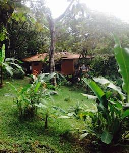 Casa de los Monos - Boca Chica - Blockhütte