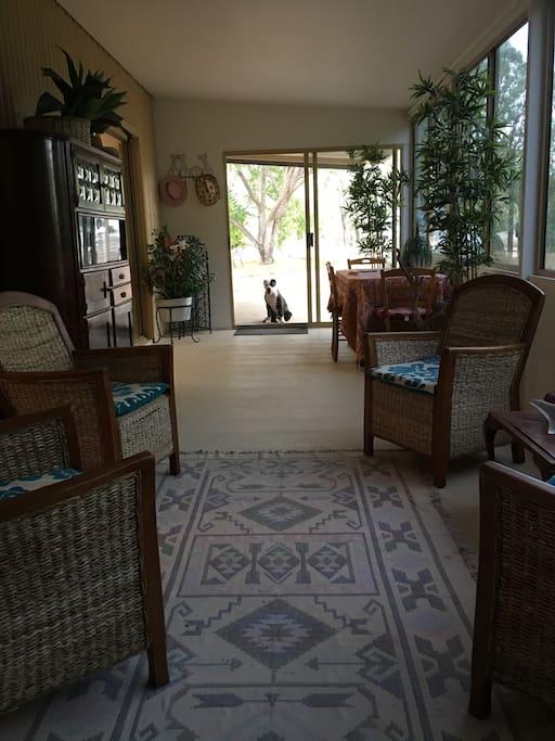 The sunroom and our friendly dog Kauri