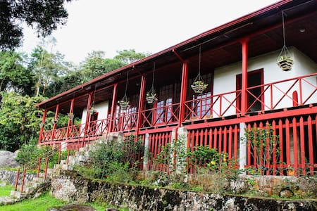 Cafetal de la Trinidad