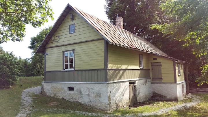 Aleksaner`s house