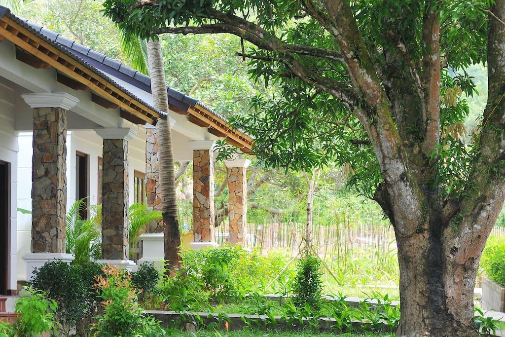 From villa to the garden