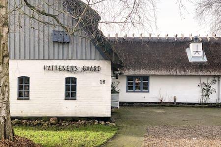 Hattesens Gaard (Hof)