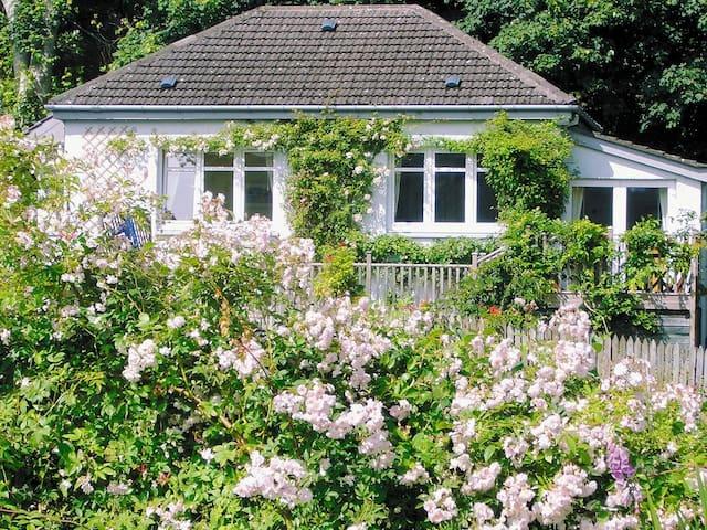 Garden Cottage (UZH)