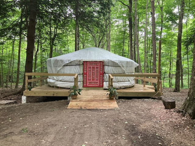 The Sanctuary Yurt at The Heron