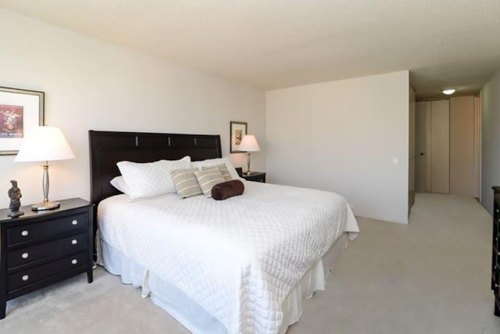 1 Bedroom Apt Near Chicago's Mag Mile
