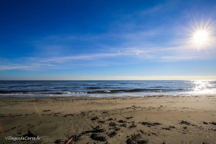 Maison maquis à 5km de la plage