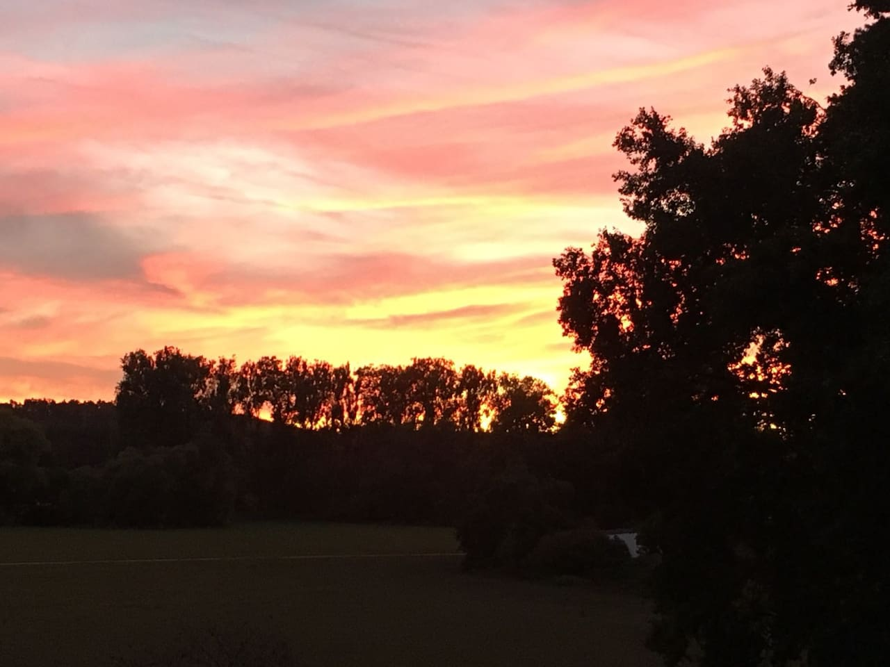 Sonnenuntergang am Waldesrand