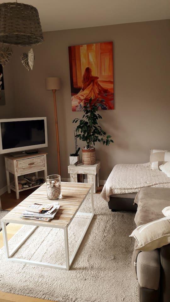 Salon détente avec télé